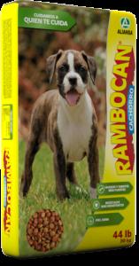 rambocan-cachorro