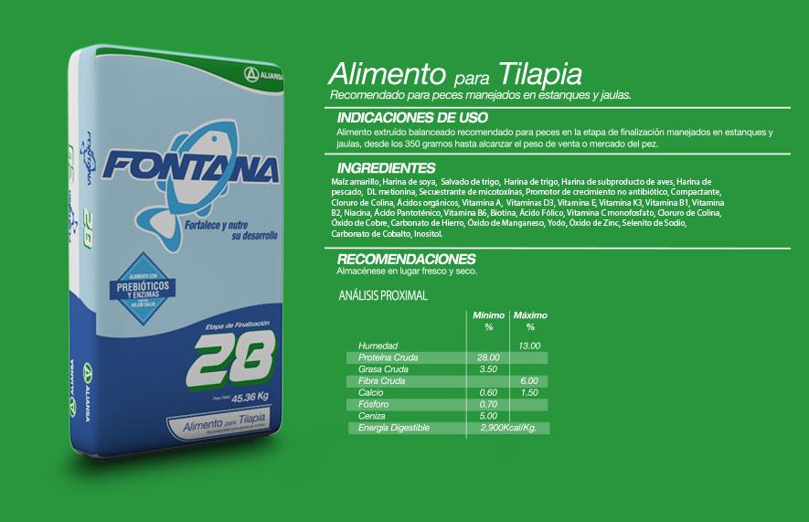 Tilapia concentrados aliansa for Tabla de alimentacion para tilapia roja