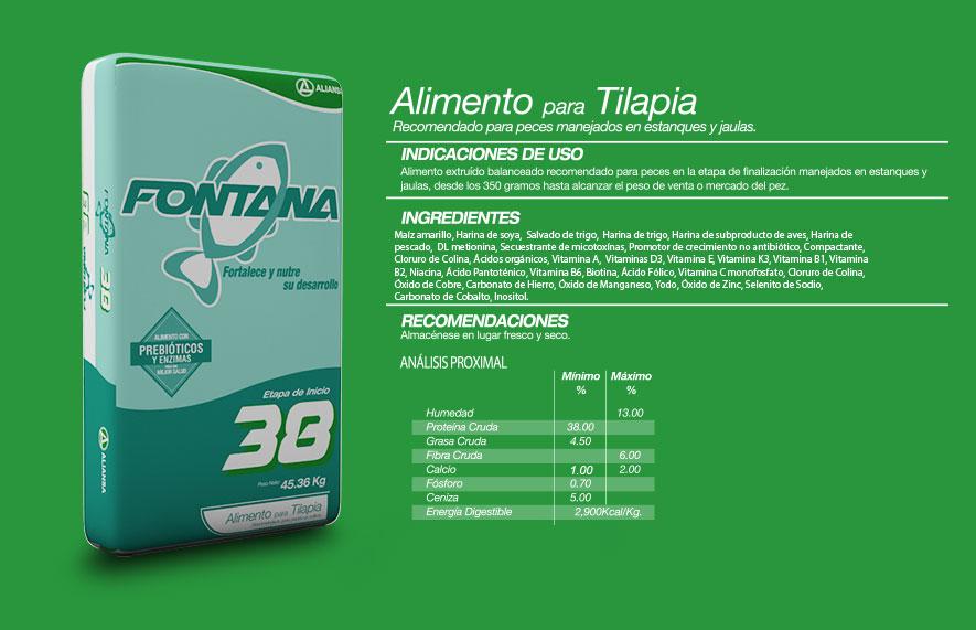 Tilapia concentrados aliansa for Comida para tilapia